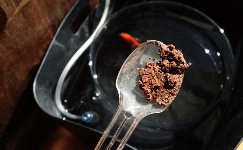 転覆ぎみの金魚に、ココア餌と加温