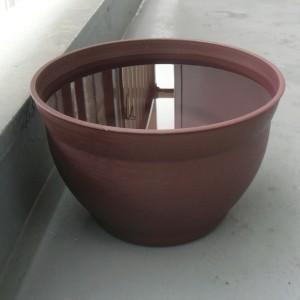 2015年7月、メダカ鉢に水をはった