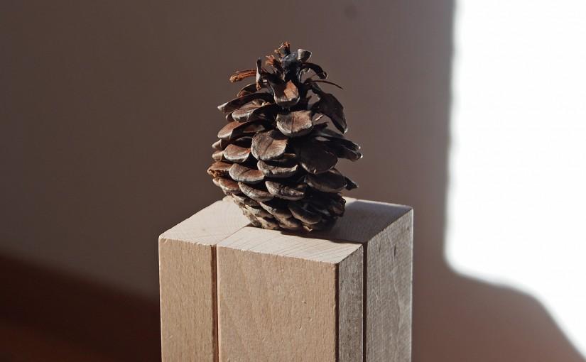 積み木で作ったクリスマスツリー、まつぼっくりで印象アップ