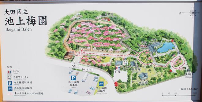 池上梅園の案内図