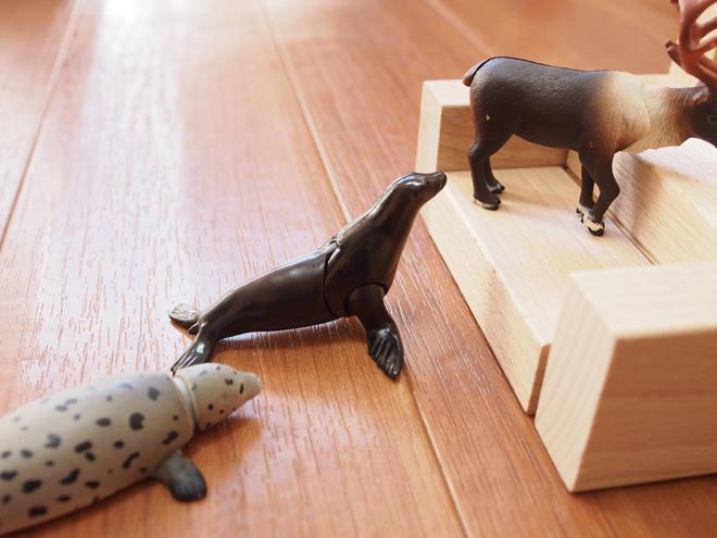 階段を動物がのぼる