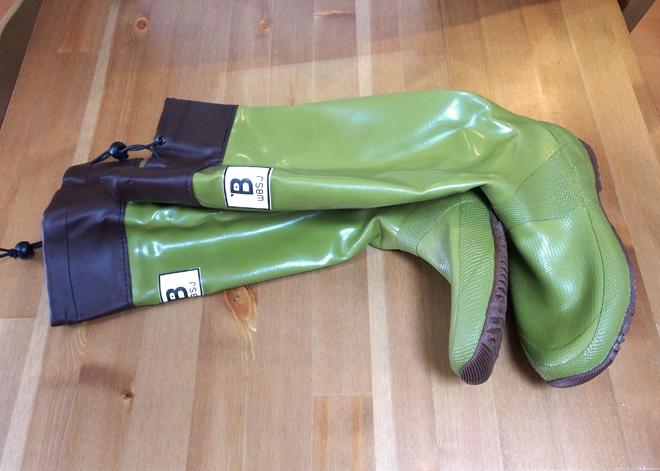 バードウォッチング長靴、メジロ