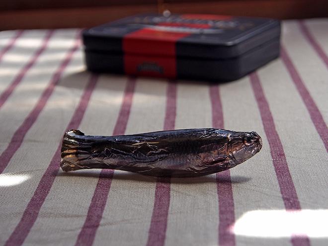 フィカー、チョコサーディン缶、魚が印刷されたフォイル