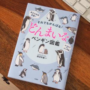 どんまいなペンギン図鑑、表紙