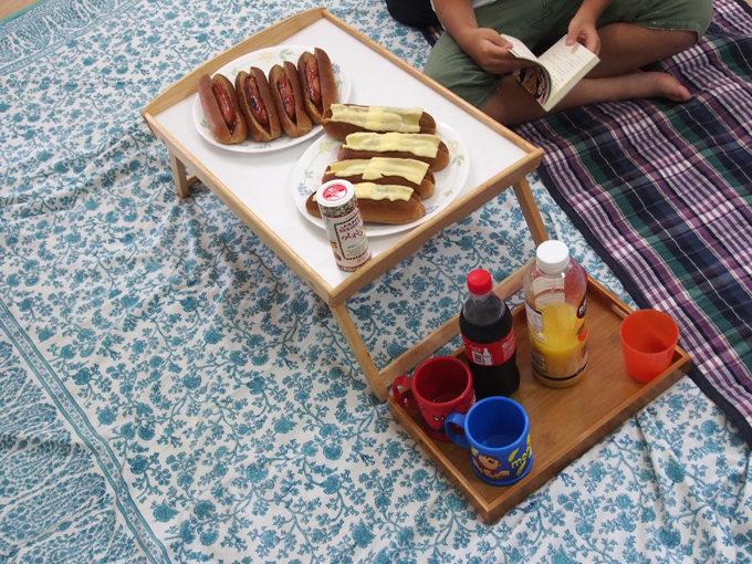 コロナ休みの過ごし方:室内ピクニック