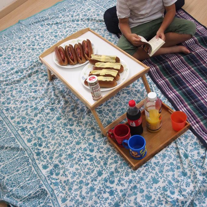 室内ピクニック